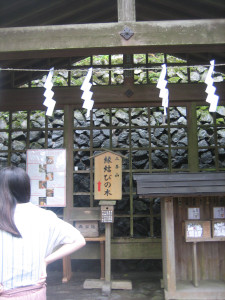 mitsumine-srine-05.JPG