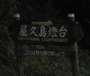 yakushimatodai-01.JPG