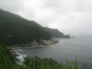 yakushimatodai-04.JPG