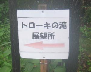 toroki-taki-01.JPG