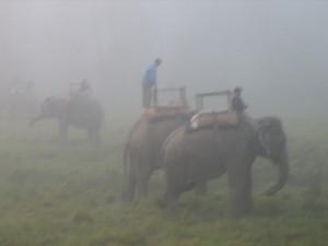 nepal2010-19.jpg
