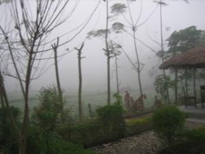 nepal2010-24.jpg
