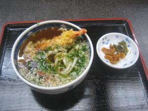 yakushima2016-15.JPG.jpg