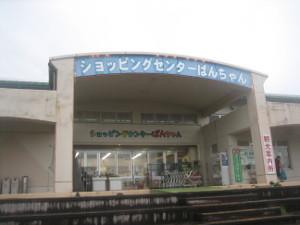 yakushima2016-28.JPG.jpg