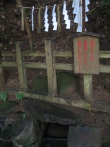 2008.kashima-shrine-03.jpg