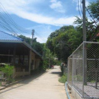 thai2015-14-03