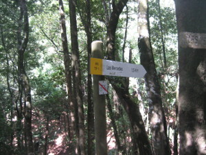 Parque-Rural-Anaga-07.JPG