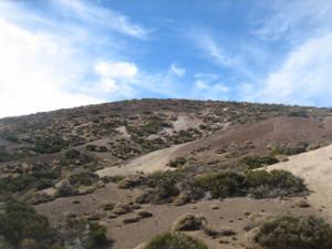 Volcán-de-Fasnia-20-05.JPG