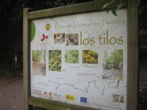Los-Tilos-01.JPG