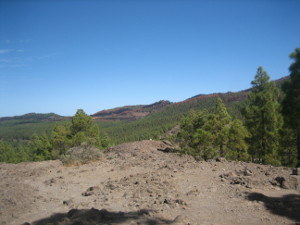 Circular-Llanos-de-la-Pez-R-2-05.JPG