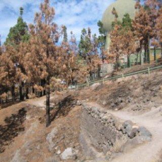 Circular-Llanos-de-la-Pez-R-2-08