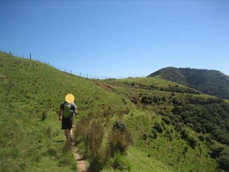 2018-NZ-travel-1279.JPG