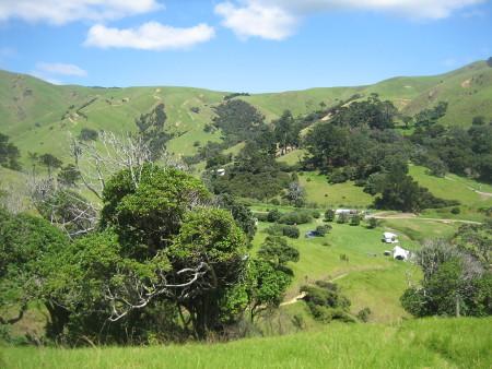 2018-NZ-travel-1319.JPG