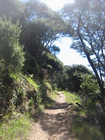 2018-NZ-travel-1340.JPG