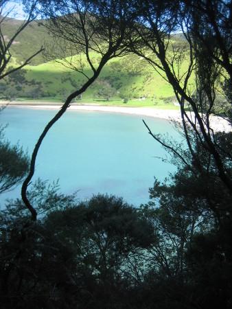 2018-NZ-travel-1359.JPG