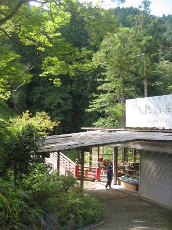 mitumine-shrine-2018-017.JPG