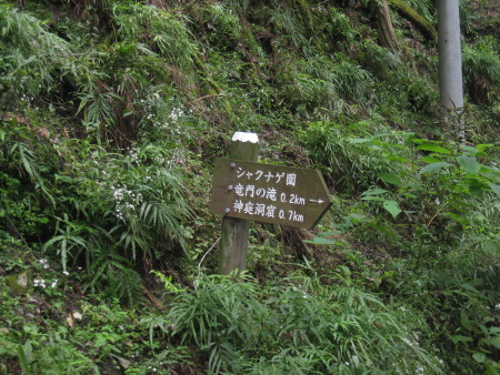 mitumine-shrine-2018-030.JPG