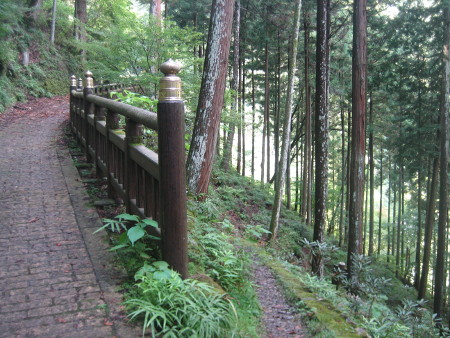 mitumine-shrine-2018-031.JPG