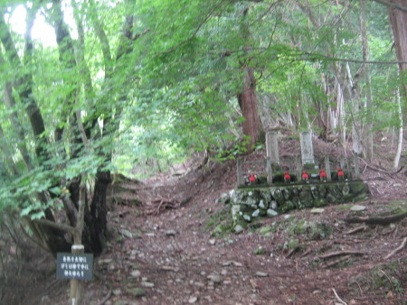 mitumine-shrine-2018-097.JPG