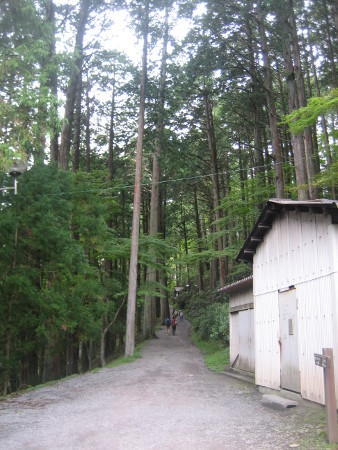 mitumine-shrine-2018-140.JPG