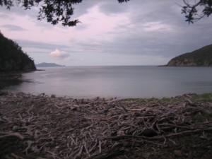Stony-Bay-Campsite-06.JPG