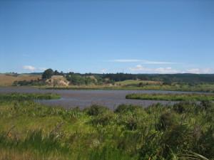 Otipua-Wetland-04.JPG