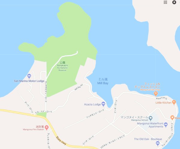 Rangikapiti-Pa-Historic-Reserve-map.jpg