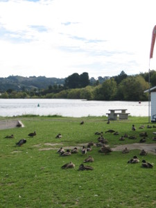 Riverside-Park-01.JPG