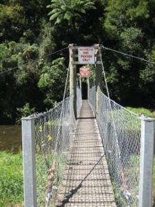 Mangaokewa-Scenic-Reserve-Riverside-Walk-01.JPG