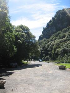 Mangaokewa-Scenic-Reserve-Riverside-Walk-07.JPG