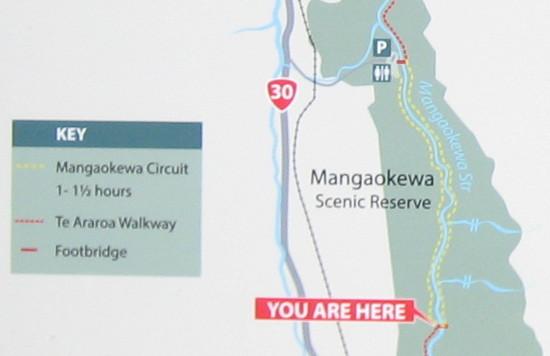 Mangaokewa-Scenic-Reserve-Riverside-Walk-map.JPG