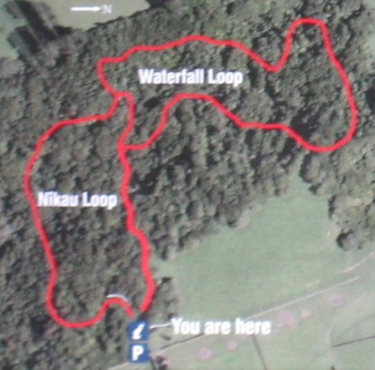 Ratapihipihi-Scenic-Reserve-map.JPG