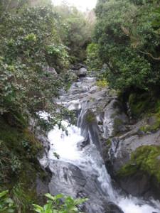 Dawson-Falls-02.JPG