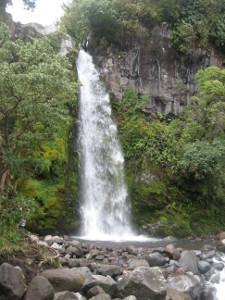 Dawson-Falls-04.JPG