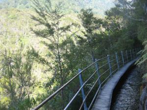 Pupu-Hydro-Walkway-03.JPG