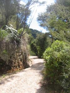 Pupu-Hydro-Walkway-06.JPG