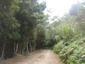 Notbett-creek-Loop-02.JPG
