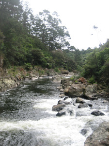karangahake-gorge-historic-walkway-04.JPG