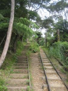 karangahake-gorge-historic-walkway-05.JPG