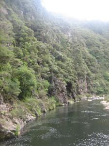 karangahake-gorge-historic-walkway-08.JPG