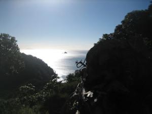 coromandel-coastal-walkway-02.JPG