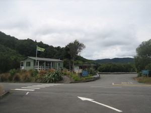 Kaitoke-Regional-Park-campground-02.JPG