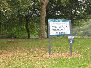 Moana-Roa-Recreational-Reseve-01.JPG