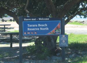 Tararu-Beachfront-North-Reserve-01.JPG