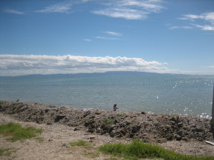 Tararu-Beachfront-North-Reserve-04.JPG