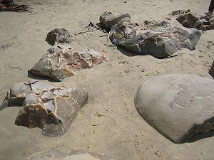Moeraki-Boulders-Beach-03.jpg