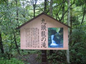 2008-kyuzuryu-04.jpg