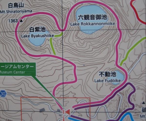 ebinohara-map.jpg