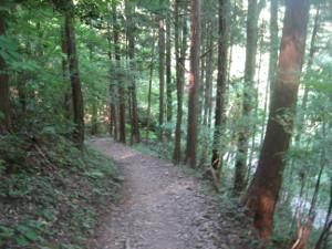 hitake-hinode-hiking-04.JPG