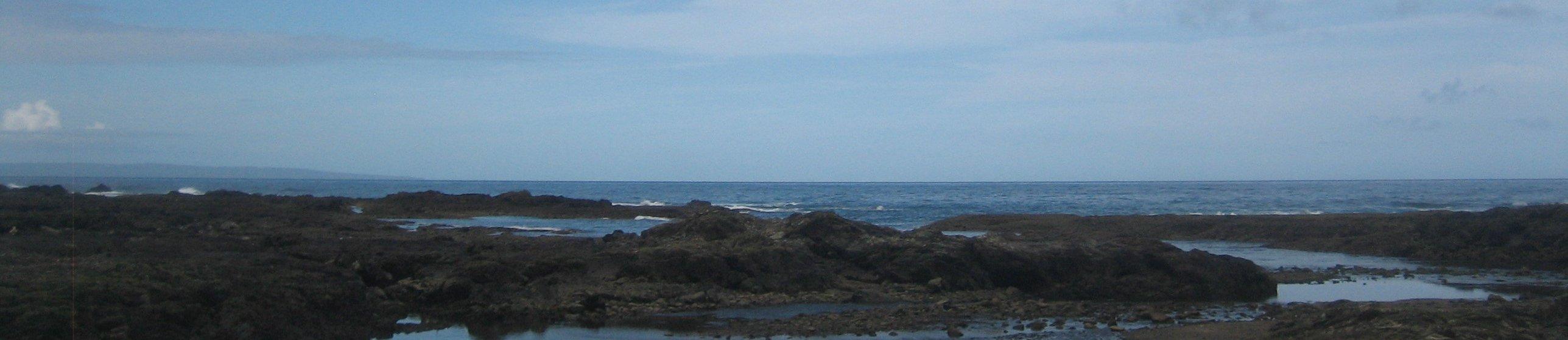 屋久島 banner image